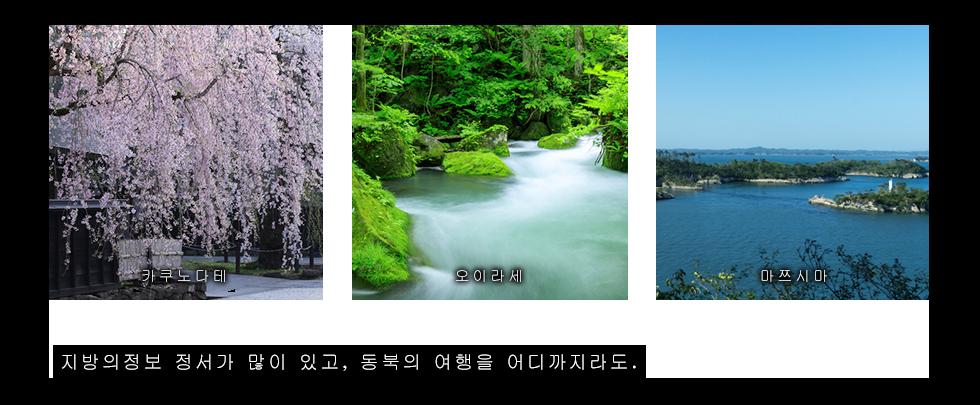 카쿠노다테・오이라세・마쯔시마。지방의정보 정서가 많이 있고, 동북의 여행을 어디까지라도.